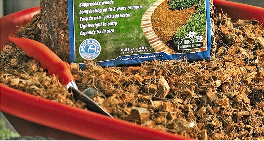 Best Mulch for Perennials